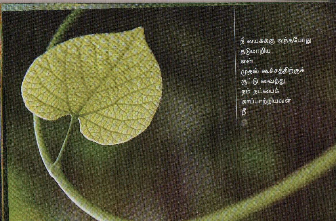 displaying 19 gt images for   tamil natpu kavithai