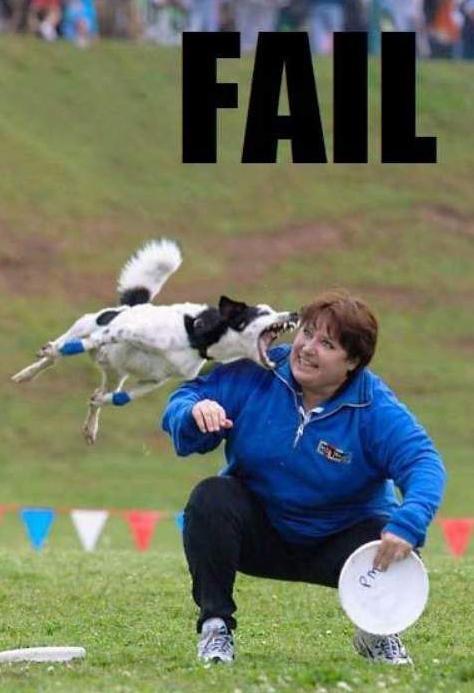 La cadena FAIL Fail_Dog