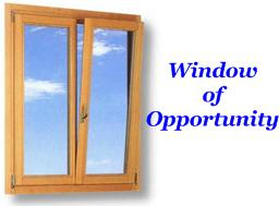 Make money online 2008 28 25 for Window of opportunity