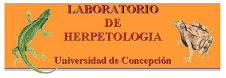 laboratorio de Herpetología