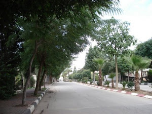 Qalqilia .the green city