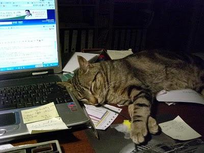Soseki aprendiendo a escribir