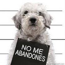 NO al abandono