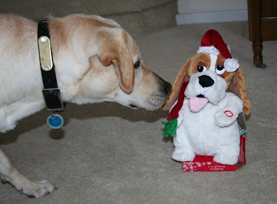 Cabana hunkered down low, next to stuffed beagle-type dog.  It's a super ugly thing, with its tongue sticking out, lopsided eyes, and a Santa hat