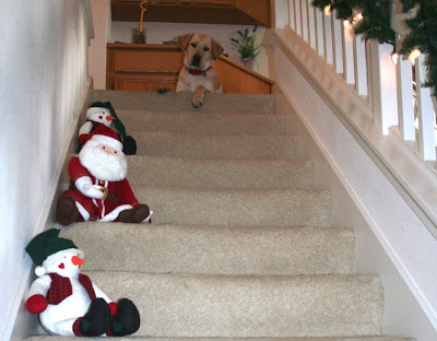 cabana sitting at the top of our stairs with her paw dangling over; santa and snowman stuffed dolls on the side of every other stair