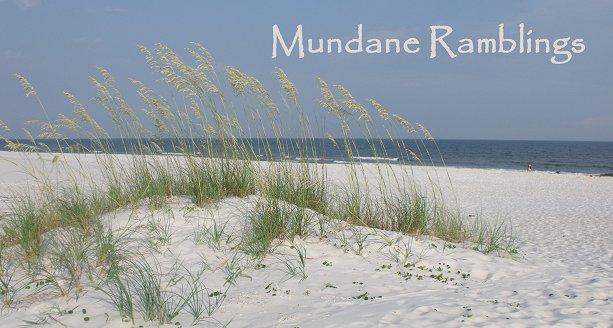 Mundane Ramblings
