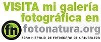 Fotonatura