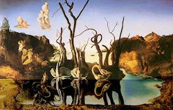 cisnes refletindo elefantes