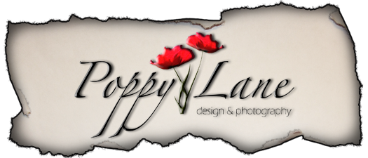 Poppy Lane Design & Photography