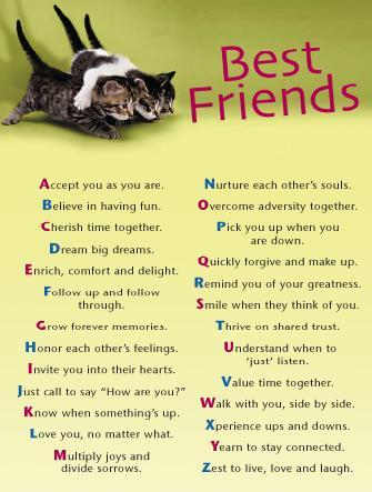 cute sayings about friendship. cute sayings about friendship. cute quotes for