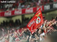 Bandeiras do Benfica