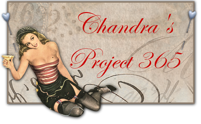 Chandra's Project 365