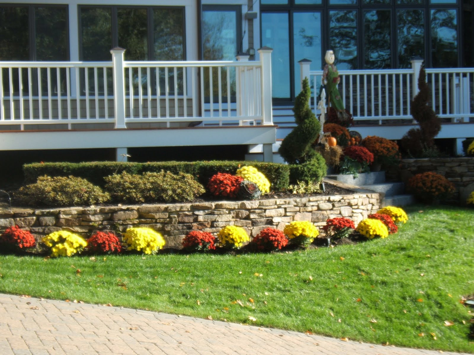 Planting Trees And Shrubs In The Fall Green With Envy Inc