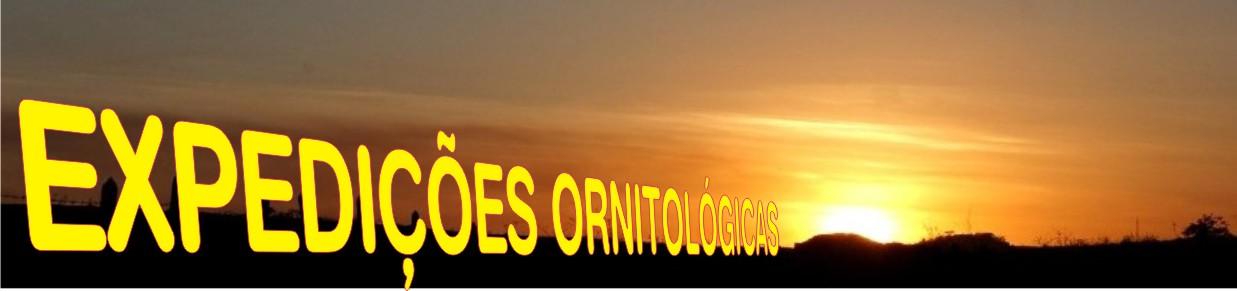 EXPEDIÇÕES ORNITOLÓGICAS