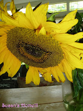 Beautiful sunflower!