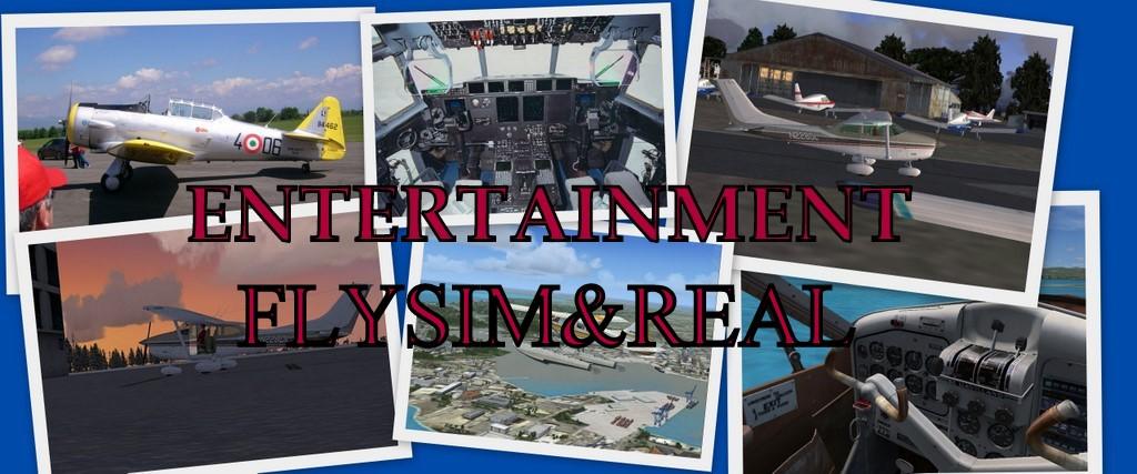 FlySimReal