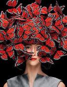 cabelos borboleta