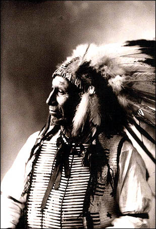 chief american horse oglala sioux born 1830 chief america horseAmerican Indian Chief