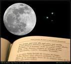 Nocturnidade