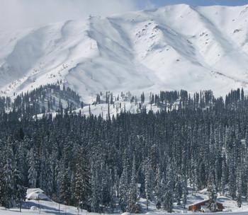 SNOW WHITE............