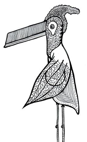 [TOOCO+BIRD+(1).jpg]