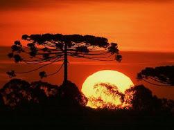 Sempre tem um pôr-do-sol esperando pra ser visto.