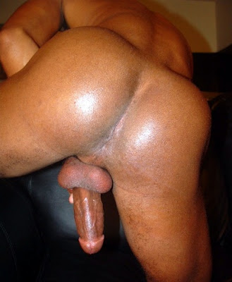 gay black ass