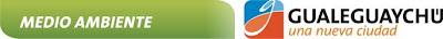 http://1.bp.blogspot.com/_MG6ug4FnhGk/TKIN36v-vgI/AAAAAAAAC2w/Ze-VIIEN5Lw/s400/logo+sec+de+ambiente+gualeguaychu.jpg