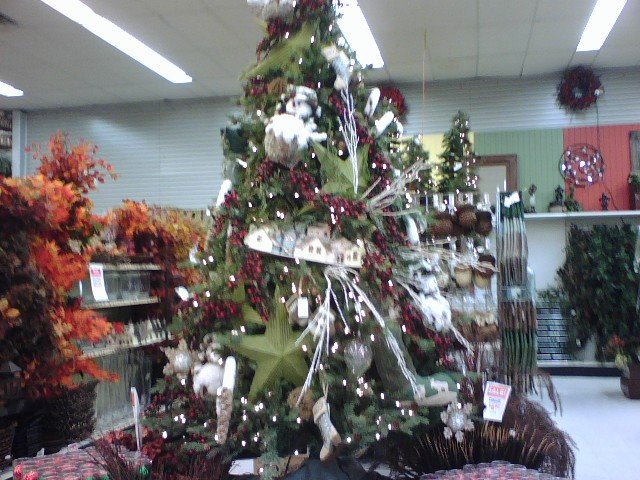Star Tree at Porters Crafts