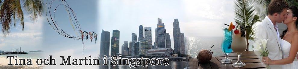 Tina & Martin i Singapore