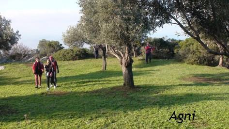 Görögország-Evia sziget-Limni-erdőjárás