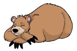 hibernating bearweek bed 5a tired bear hibernate cold weather peace love