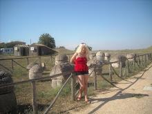 Vara în Tarquinia - Italia