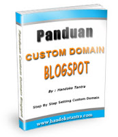 panduancustomdomain