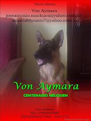 Von Aymara