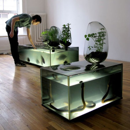 ... freshwater aquarium, tropical fishes and plants: 10 Unique Aquariums