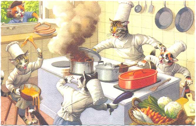 gatti in cucina