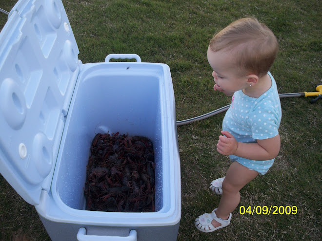 Checkin out the crawling crawfish