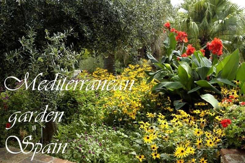 Mediterranean Garden Spain