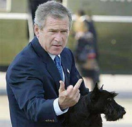 G. DUBYA......SAYS DITTO TO D.C. ! !