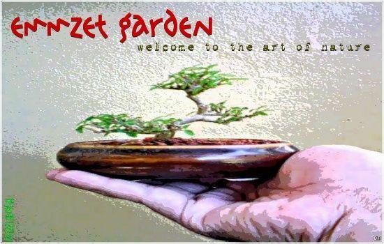 emMZet.garden