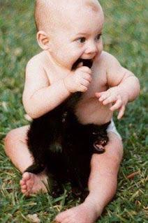 Foto bebe e gato