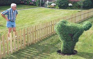 Jardinagem ofensiva