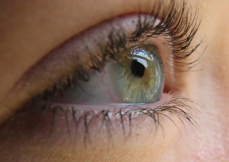 [sunny-eyes-012b.jpg]