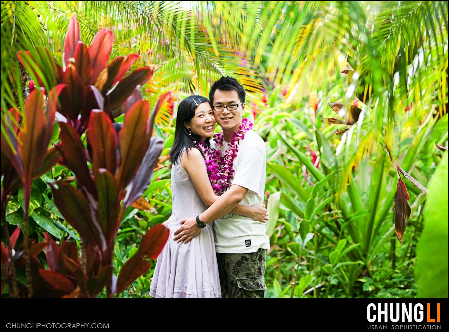 Chung Li san francisco maui hawaii destination wedding photographer