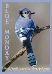 I participate in Blue Monday!