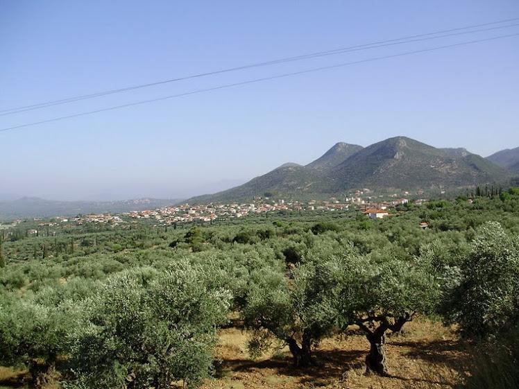 ARFARA  MESSINIAS 2010
