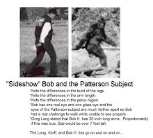 Patty Versus Bob Heironimus