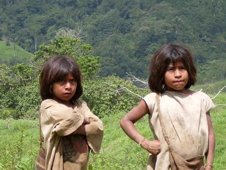 Nos amis les Kogui