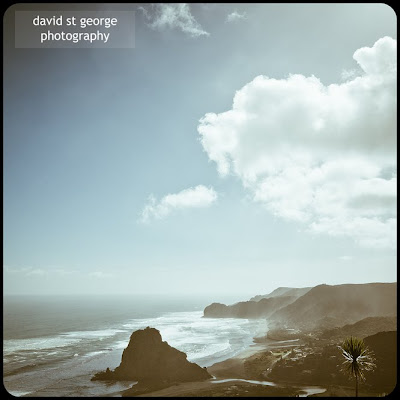 Piha Beach New Zealand David St George Photography